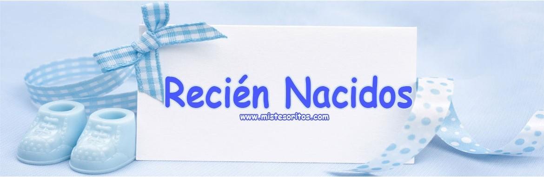 RECIEN NACIDO - Mis Tesoritos - Tienda de Ropa para Bebés Niño y Niña 94907095553c